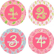 Little LillyBug Designs - Monthly Baby Stickers - Girl - Paisley - Pink