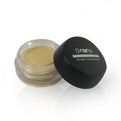 AmaranTeen - Professional Concealer Foundatoin Mousse Studio Face Care Make up Base Highlighter Primer Cosmetics Brand Danni Makeup