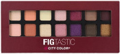 City Colour FIG Tastic Eyeshadow Book