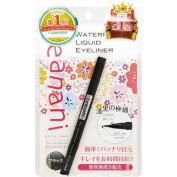 Leanani Water Proof Liquid Eyeliner - Black