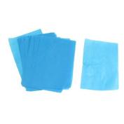 FOREVER YUNG Lady Cosmetic Facial Oil Blotting Paper Sheets 100 Pcs Rosebrown Blue