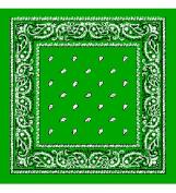 Leaf Green Bandanna - Paisley