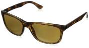 Ray-Ban Rb4181 Wayfarer Sunglasses