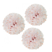 Allydrew 30cm Set of 3 Tissue Pom Poms Party Decorations for Weddings, Birthday Parties Baby Showers and Nursery Décor, Light Pink Polka Dots