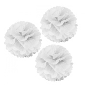 Allydrew 30cm Set of 3 Tissue Pom Poms Party Decorations for Weddings, Birthday Parties Baby Showers and Nursery Décor, White
