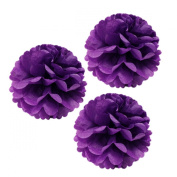 Allydrew 30cm Set of 3 Tissue Pom Poms Party Decorations for Weddings, Birthday Parties Baby Showers and Nursery Décor, Purple