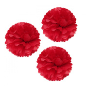 Allydrew 30cm Set of 3 Tissue Pom Poms Party Decorations for Weddings, Birthday Parties Baby Showers and Nursery Décor, Red