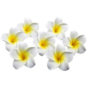 Easy Lifestyles 6cm EVA White and Yellow Plumeria Rubra Hawaiian Fake Artificial Flowers for Wedding/Party/Home Decor Decoration--100 Pcs/Bag