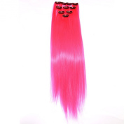 Neitsi® 10pcs 46cm Coloured Highlight Synthetic Clip on in Hair Extensions #F24 Pink