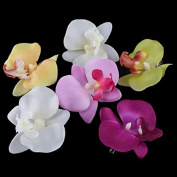6 PCS New Orchid Flower Fashion Hair Clip Hairpins Bridal Hawaii Party Girl