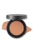 SPF 20 Correcting Concealer in Tan 1