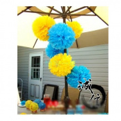Honeyway(TM) 6pcs Blue Yellow Paper Tissue Flower Pom Poms Wedding Birthday Party Decorations, 25cm , 2 Colours