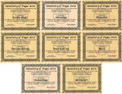 Lot 8 Novelty Diplomas, Astrology, Candle Magic, Divination, Fortune Telling, Numerology, Rune Casting, Wicca, and Witchcraft