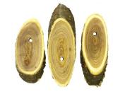 Unfinished Oblong Wood Slices