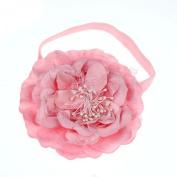 Sankuwen® Baby Girl Headband, Girl's Elastic Flower Hairband Photography Prop Band Headbands