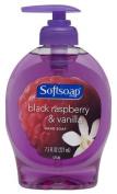 Softsoap Hand Soap, Black Raspberry & Vanilla, 220mls