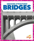 Bridges (Amazing Structures)
