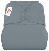 Flip Cloth Nappy Cover - Snap - Armadillo