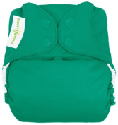 BumGenius Freetime All in One Cloth Nappy - Snap - Hummingbird - One Size