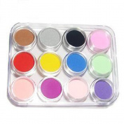 FOONEE 12 Mix Colours Acrylic Powder Builder Nail Art Set
