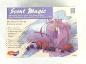 Scent Magic Refreshing Salts to Scent Your Room or Bath Berry Fragrances