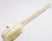 Dry Skin Body Brush/convenient Curved Wood Handle , Hook Included and Cotton Loop for Hanging/ Improves Skin's Health and Beauty / High Quality Natural Bristle Brush - Helps Remove Dead Skin and Toxins, Cellulite Treatment , Improves Lymphatic Function ..