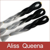 Aliss Queena(TM)60cm 80Grams/Pack Black & Grey Ombre Two Tone Coloured 100% Kanekalon Jumbo Box Braiding Hair