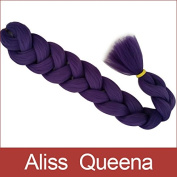 Aliss Queena(TM)Purple Expression Xpression 100% Kanekalon Ultra Braiding Hair 210cm Extension
