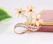 Beyend Fashion Flower Brooch Pin Cat's-eye