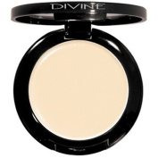 Divine Skin & Cosmetics Shadow Magnet - Light