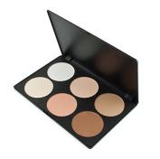 Shengyu 6 Colours Contour Face Power Foundation Makeup Palette
