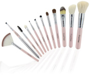 EmaxDesign 12 Piece Professional Makeup Brush Set Goat Hair Pink Handle Cosmetics Brushes Kits With Rose Pattern Case