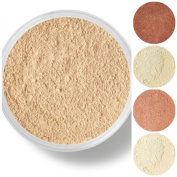 STARTER SET Mineral Makeup Kit Bare Skin Sheer Powder Matte Foundation Veil (Warm