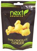 Next Organics Dark Chocolate Covered Ginger, Organic, 120ml