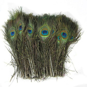 Sealike 50 Pcs Natural Peacock Feathers 25cm - 50cm with Stylus