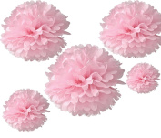 HoHoDeal Set of 5 Mixed 36cm and 25cm Pink Tissue Paper Pom Poms Wedding Reception Bridal/Baby Shower Party Nursery Hanging Decoration