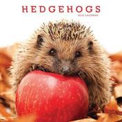 Hedgehogs Wall Calendar