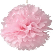 "SUNBEAUTY 10""/25cm 5pcs Tissue Paper Baby Pink Pom Poms Flower Balls Hanging Decoration Party Birthday Wedding"