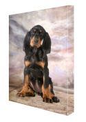 Black Tan Coonhound Sitting Dog Canvas 18 x 24