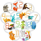 "Stick'Nsnap(TM) 12 baby boy or girl, milestones monthly stickers, ""Happy Animals"",Grey. 8.3cm diameter. To put on shirt, bodysuit, creeper or ONESIE®"