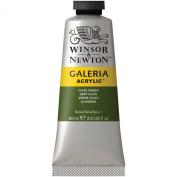 Galeria Acrylic Paint 60ml/Tube-Olive Green