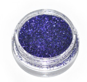 Dark Purple Eye Shadow Loose Glitter Dust Body Face Nail Art Party Shimmer Make-Up