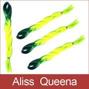 Aliss Queena(TM) 1Pcs/Lot 60cm Ombre Green Super Kanekalon Jumbo Braid 100% Fibre Braiding Hair Dreadlock Weaving Extension 100g/Pcs