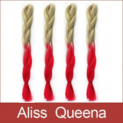 Aliss Queena(TM)1Pcs/Lot Ombre Red Kanekalon Soft Jumbo Braid 100% Fibre Braiding Hair Extension
