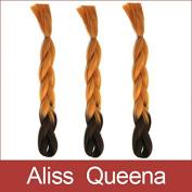 Aliss Queena(TM)1PCS/PACK 60cm Kanekalon Jumbo Braiding Hair Ombre Brown Colour 100G/PC Braid Hair Extension
