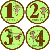 Rocket Bug Monthly Growth Stickers, Monkeying Around Baby