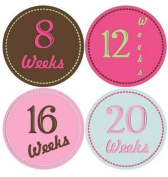 Belly Bump Stickers Momma To Be Pregnancy Stickers Belly Stickers Girly Pastel Hearts