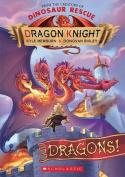 Dragon Knight #4 Dragons!