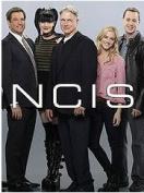 NCIS: Season 12 [Region 4]