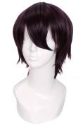 Lemail wig ®25cm Short Black Purple Noragami Yato Cosplay Man Wig Zy83